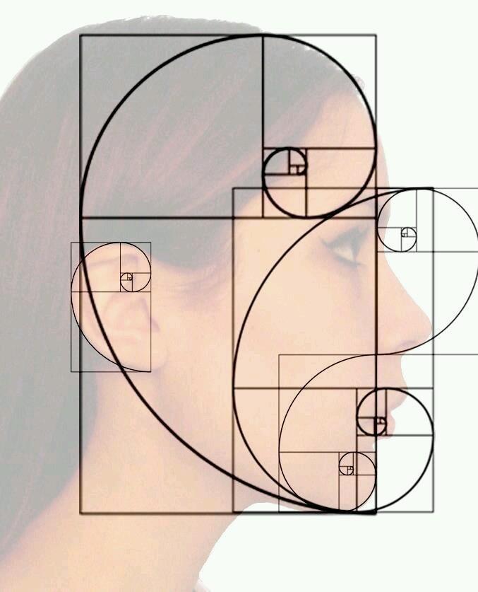 Spirale_Nombre_Or